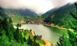 Doğu Karadeniz Yayları/Batum (I. Program)