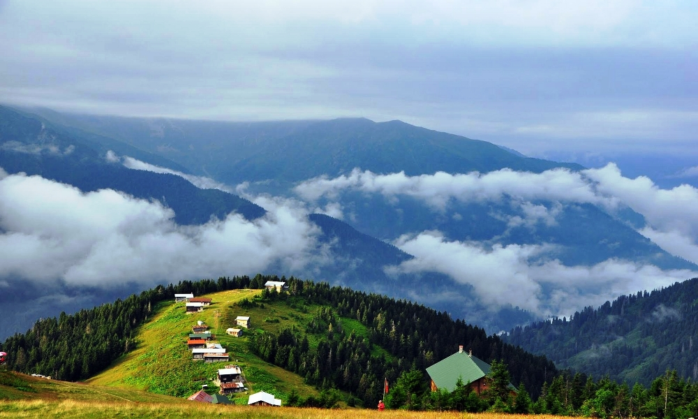 Doğu Karadeniz Yayları/Batum (2.Prog)