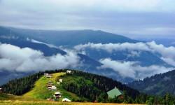 Doğu Karadeniz Yayları/Batum (II. Program)